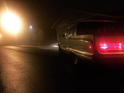 Into the mist by Imsawrie