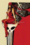 Punisher Max 17