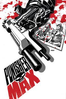 Punisher Max 21
