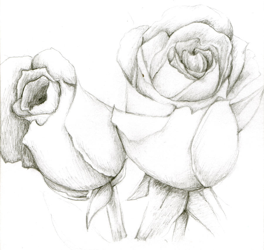 Mother's day roses by Airali-the-Sylph on DeviantArt How To Draw A Rose For Mothers Day