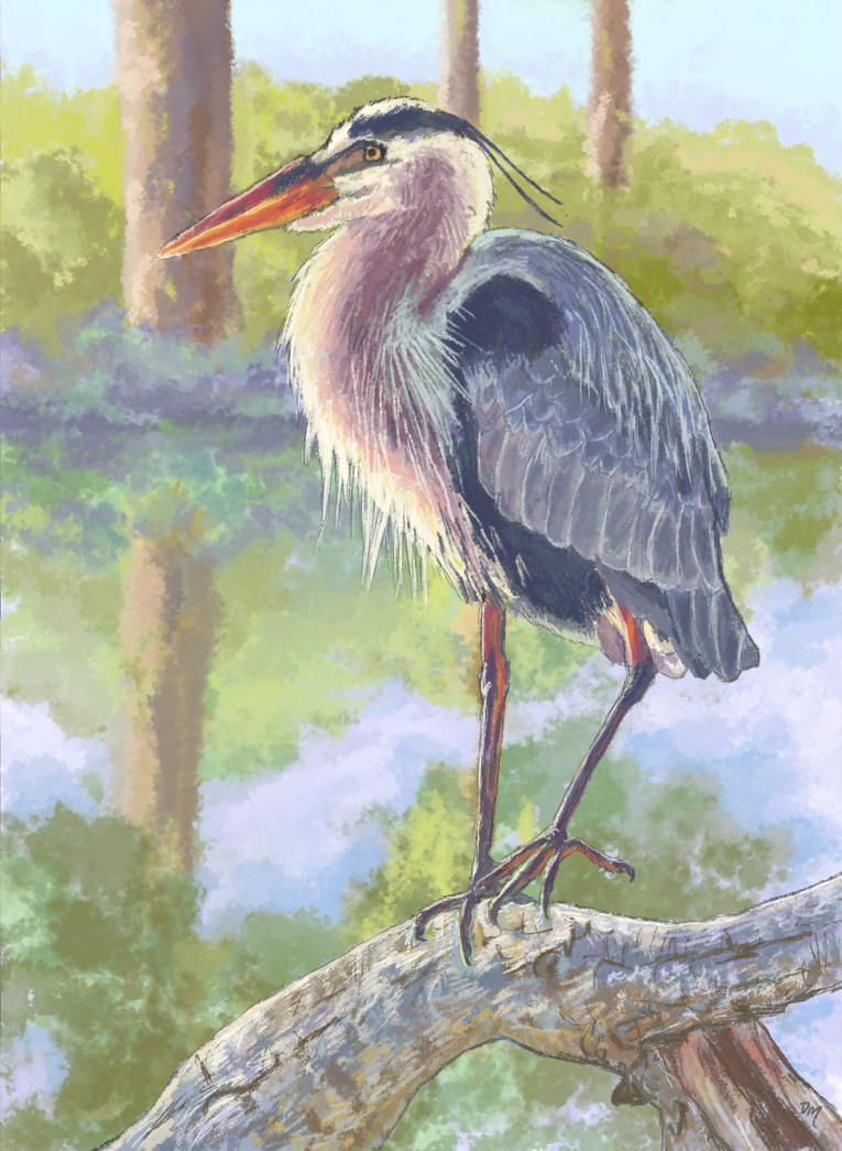 Stork Color Digital Study by Debra-Marie