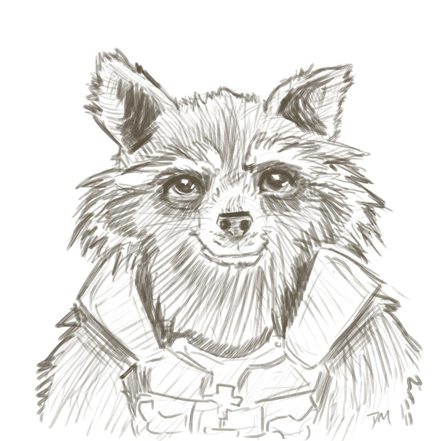 Rocket Raccoon by Debra-Marie