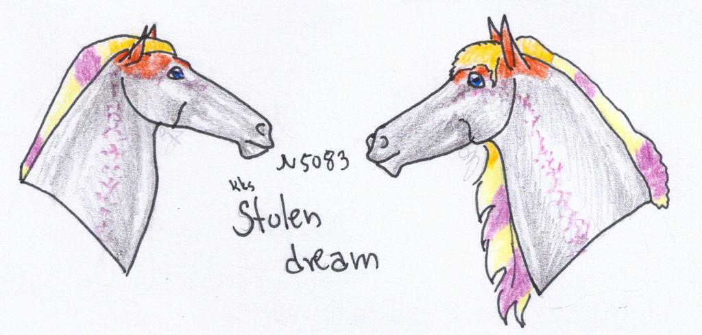 N5083 KKS Stolen Dream