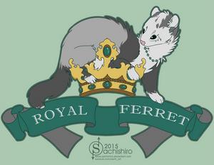 Royal Ferret