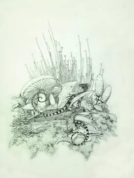 Book dragons and mushrooms
