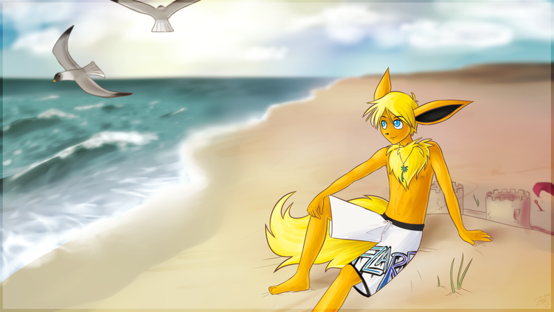 Seth at the Beach by zurisu