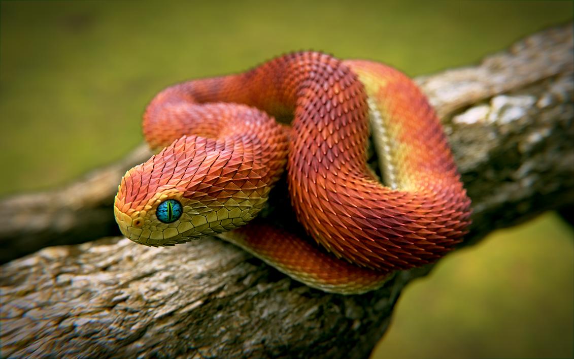 Orange Snake by obi1knobi