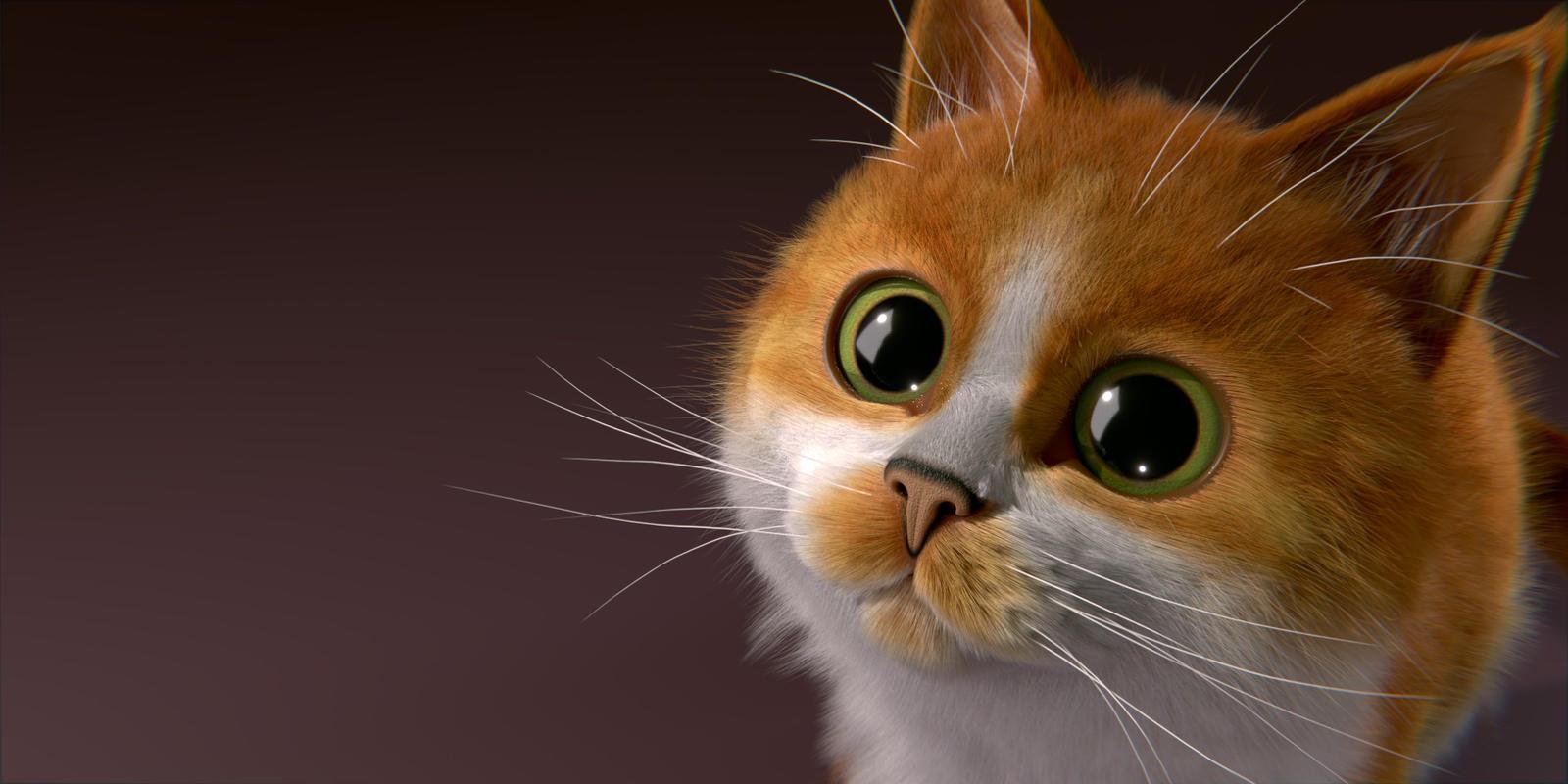 Kitty In A Blender ~ Blender cat splashscreen entry by obi knobi on deviantart