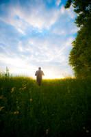 Walking a blooming field 1 by LordGuardian