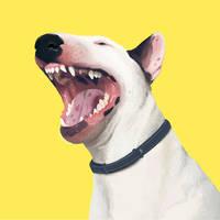 Yawn by Hih1ri
