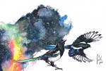 Magical Magpies
