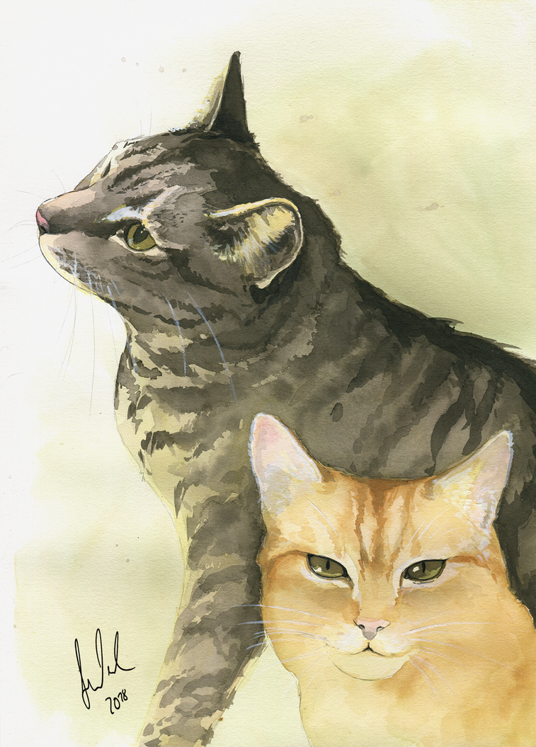 Kitty portraits by Toradh
