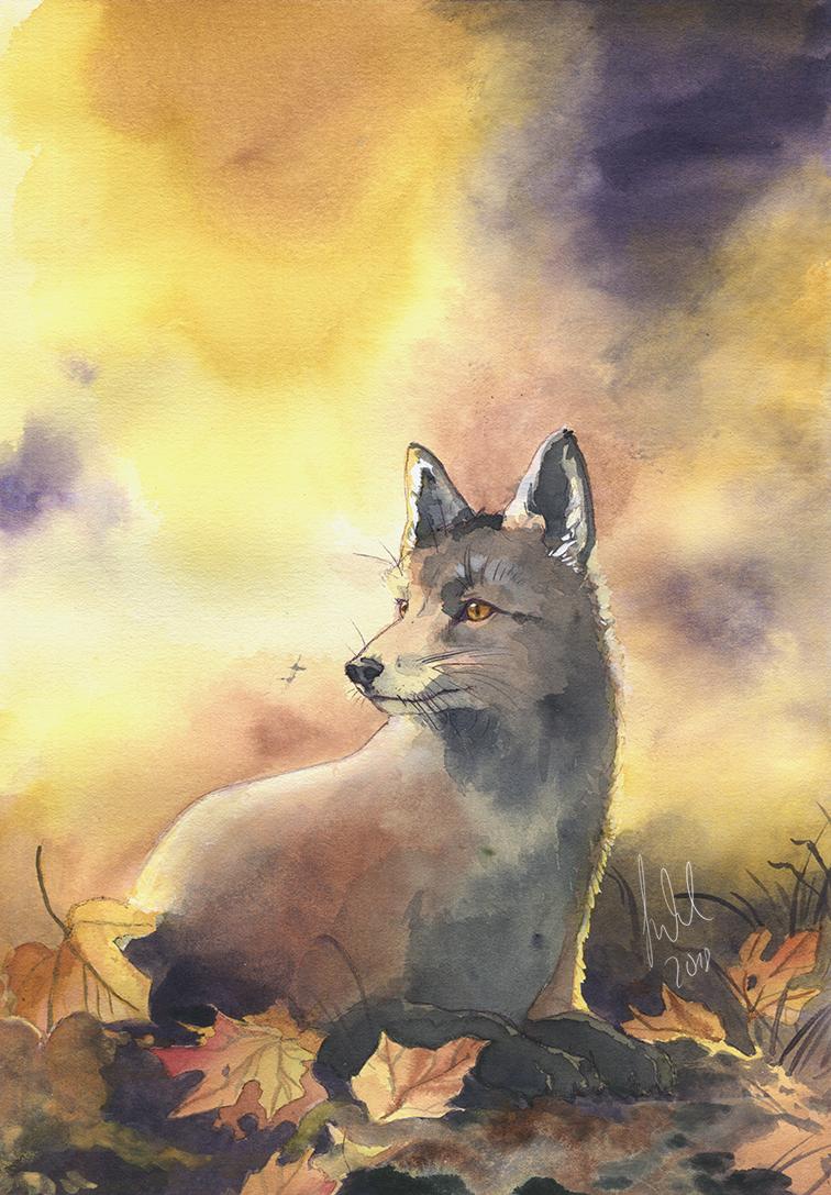 Autumn Fox by Toradh