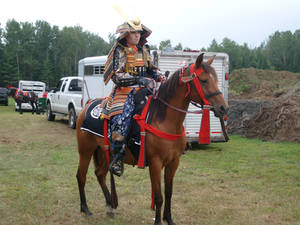 Samourai Horse Parade - 02