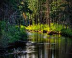 Slow River Bend