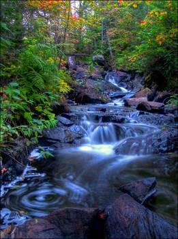 Early Autumn Swirl