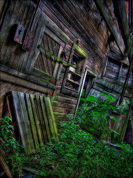 The Nature of Decay