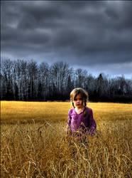 Walk In Fields of Gold by wb-skinner