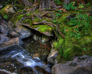 Wood, Rock, and Water by wb-skinner