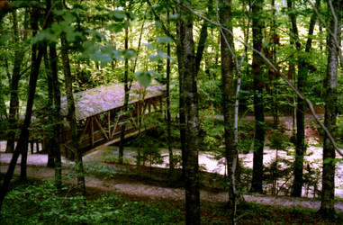 Wood Bridge by deelkar