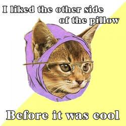hipster cat by DominicFasino