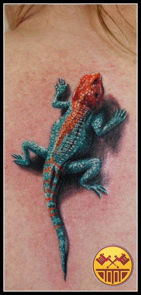 Agama lizard by xandervoron