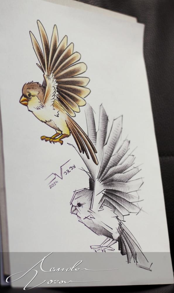 20141013-sparrow-sketch by xandervoron
