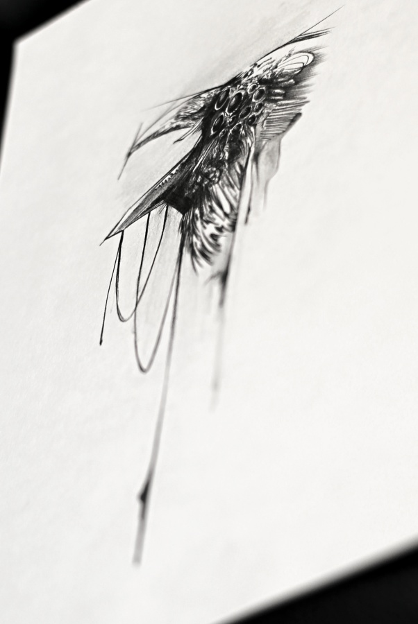 20150706-ravenhead by xandervoron
