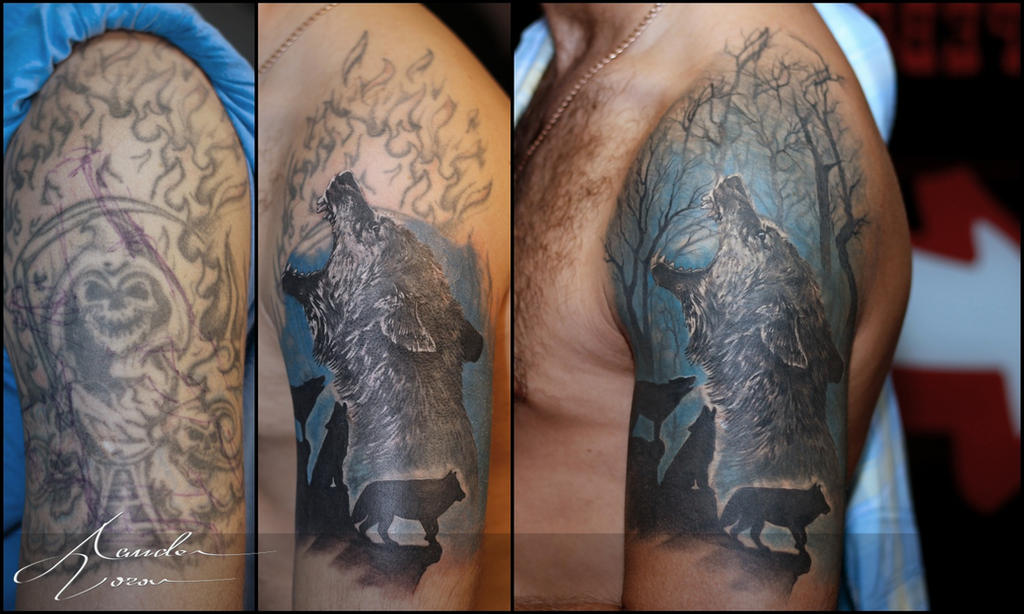 July - 2015 / Wolf coverup by xandervoron