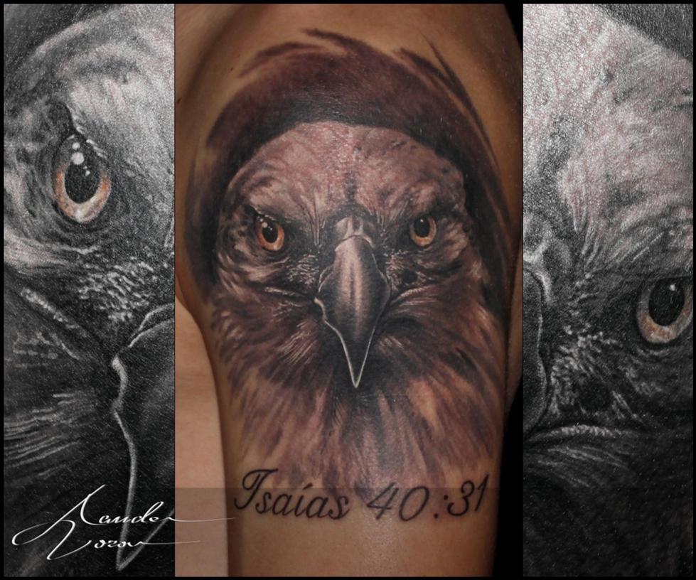 Sept - 2015 / Bald eagle by xandervoron