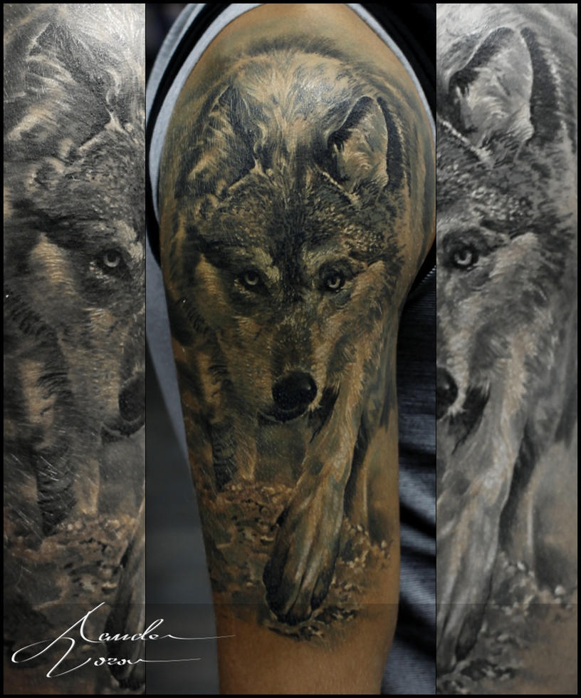 Sept - 2015 / Wolf / Totally healed by xandervoron