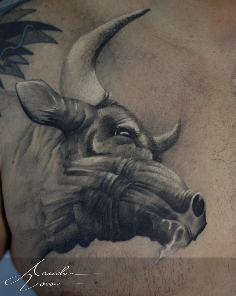 2015 - Nov / Bull by xandervoron