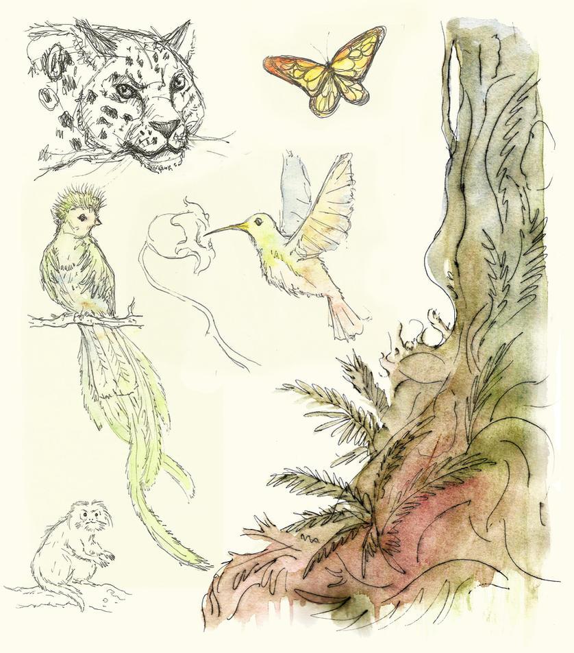 Animal Sketchs by Cinvira