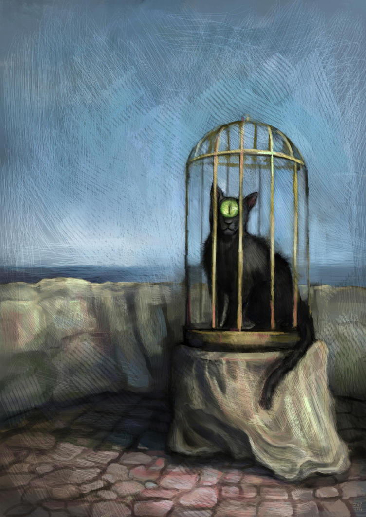 The cat by Cinvira