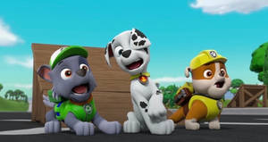 Gasps rocky, Marshall and rubble