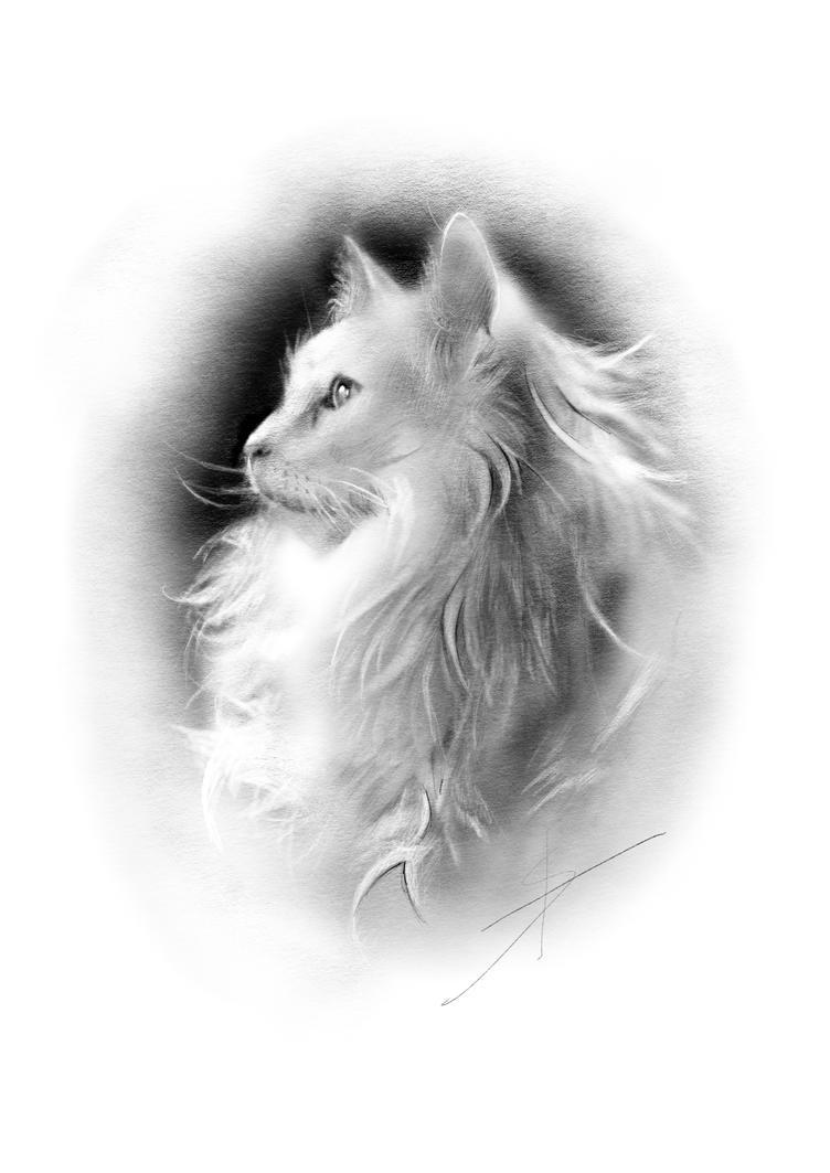 Cat portrait by StyrbjornA