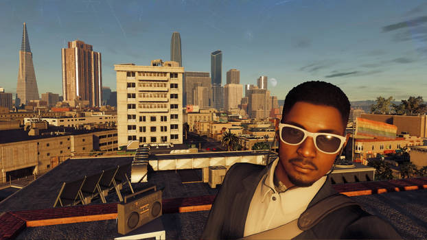 Watch Dogs 2 Roofs of San Francisco