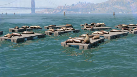 Watch Dogs 2 Resting Seals by Beatminister