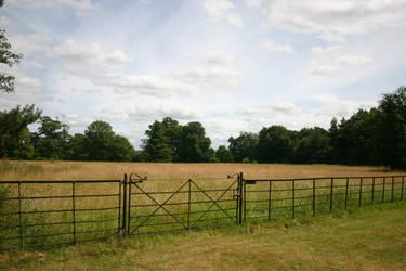 Field stock