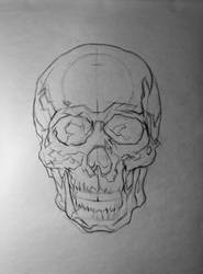Skull layin/mapping, frontal view by 93Oasys