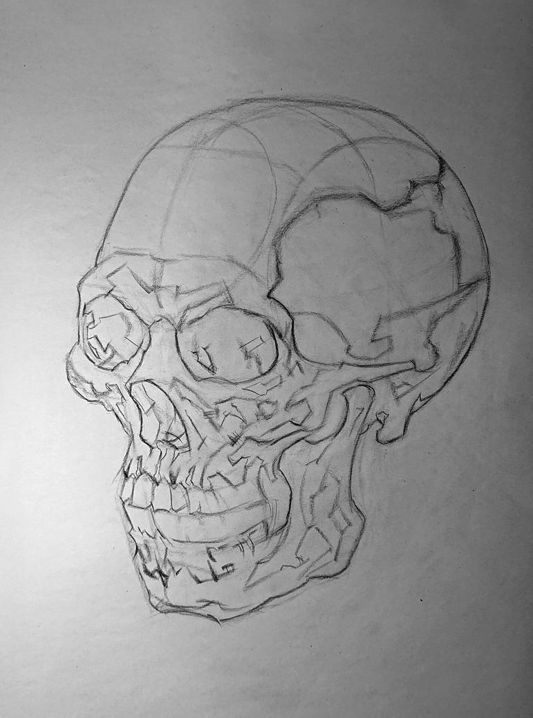 Skull layin/mapping, 3/4 view by 93Oasys