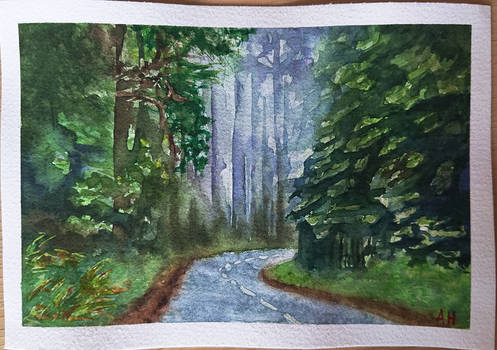 Misty Forest Watercolor