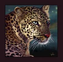 Leopard of the Masai-Mara by oomu
