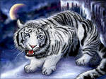 White Ice Tiger