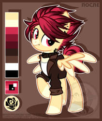 Redesign OC 12 by Petruse4ka