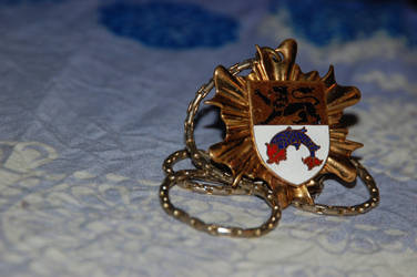 Crest Necklace by ginsengi