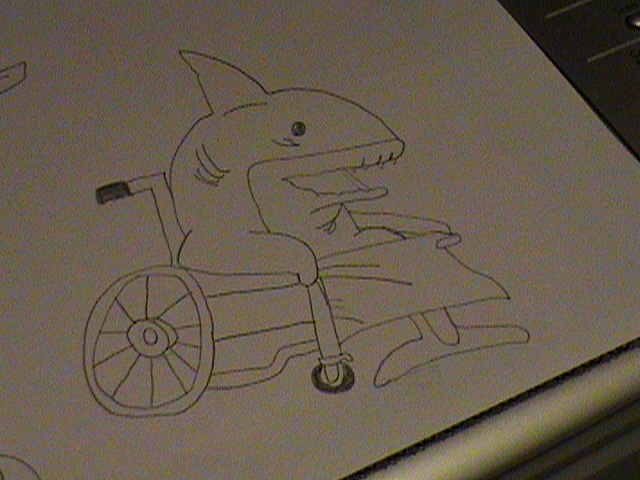 Tiburon Viejo-Old Shark by AlexCharly