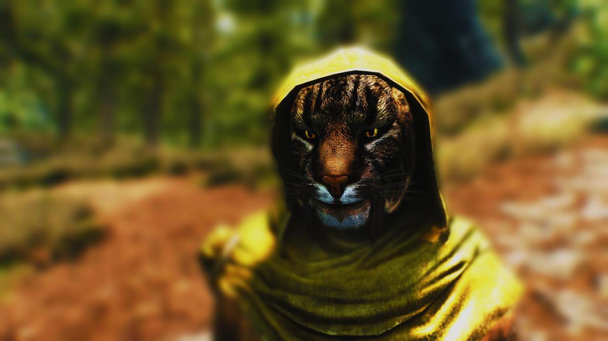 Elder Scrolls V: Skyrim - M'aiq the Liar by Lonewolf898