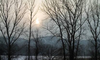 Foggy Hills