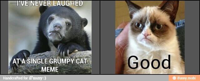 Grumpy Bear meets Gumpy Cat by ninjawerr